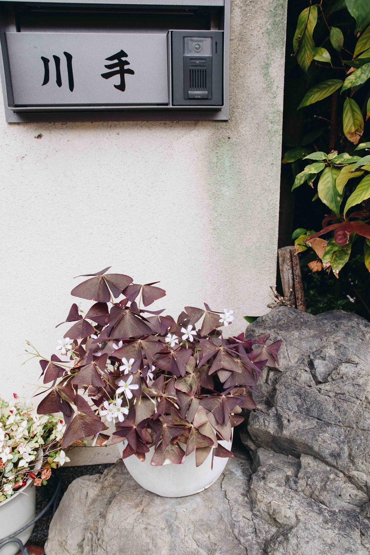 Japan-9015.jpg