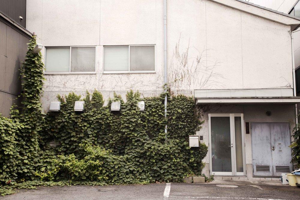 Kyoto-9032.jpg