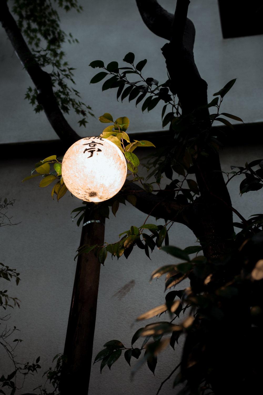 Kyoto-8910.jpg