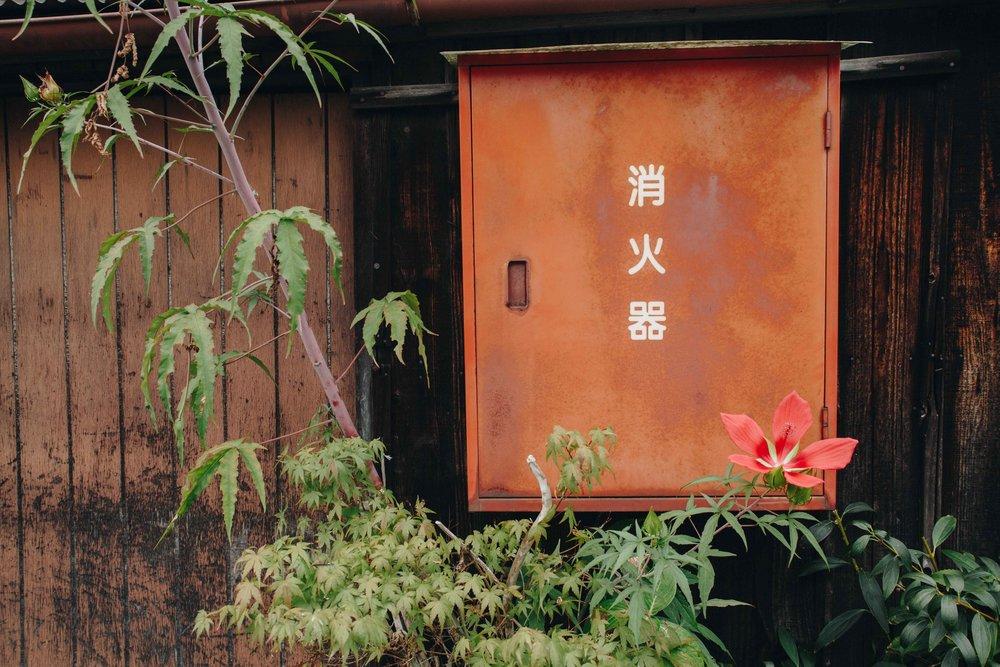 Kyoto-9003.jpg