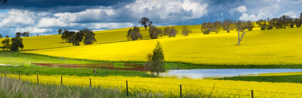 Landscape-2.jpg