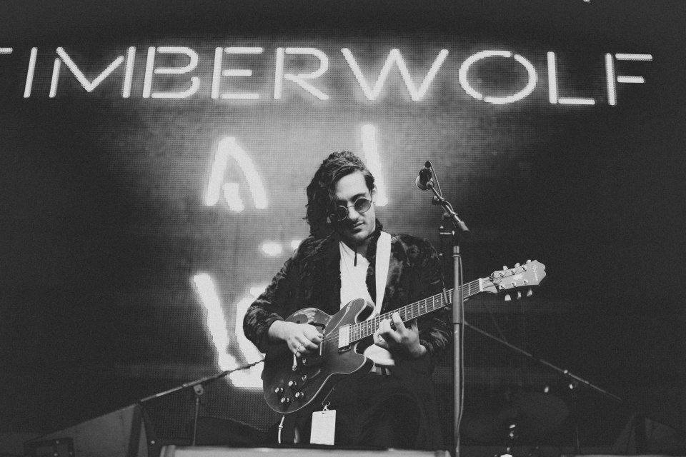 timberwolf45.jpg
