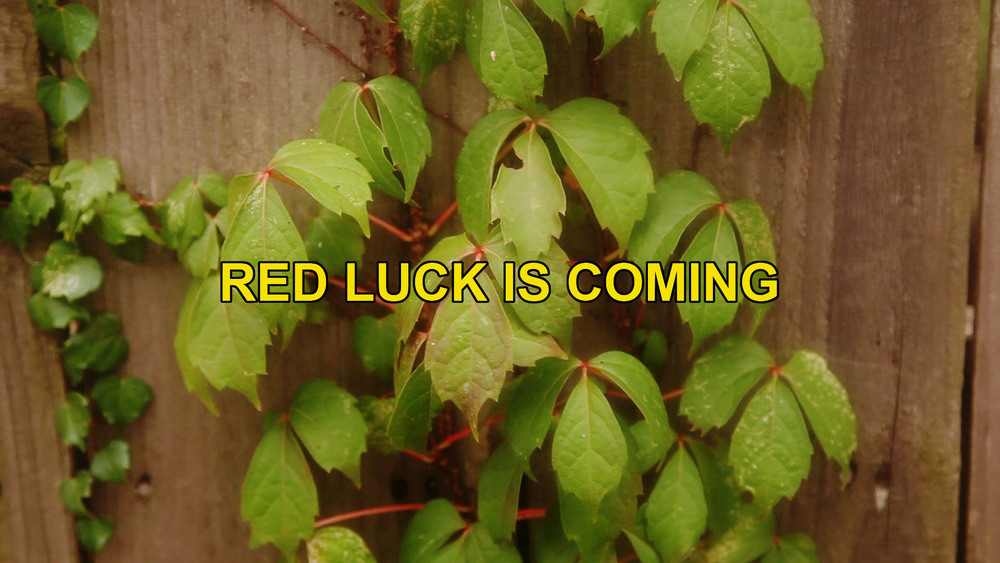 RED LUCK IS COMING_401.jpg