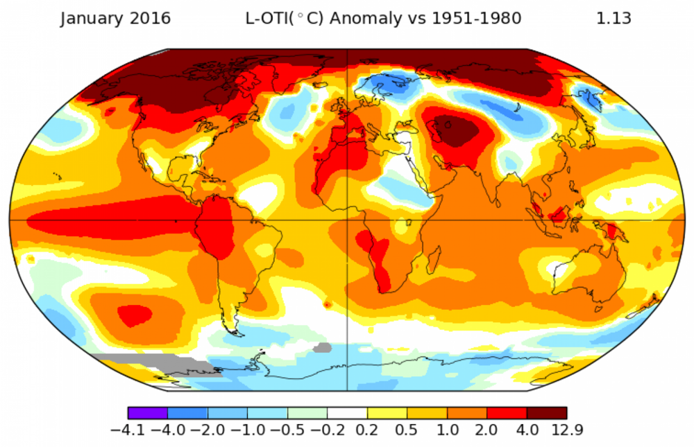 Temperature anomalies for January, 2016. NASA Goddard Institute for Space Studies