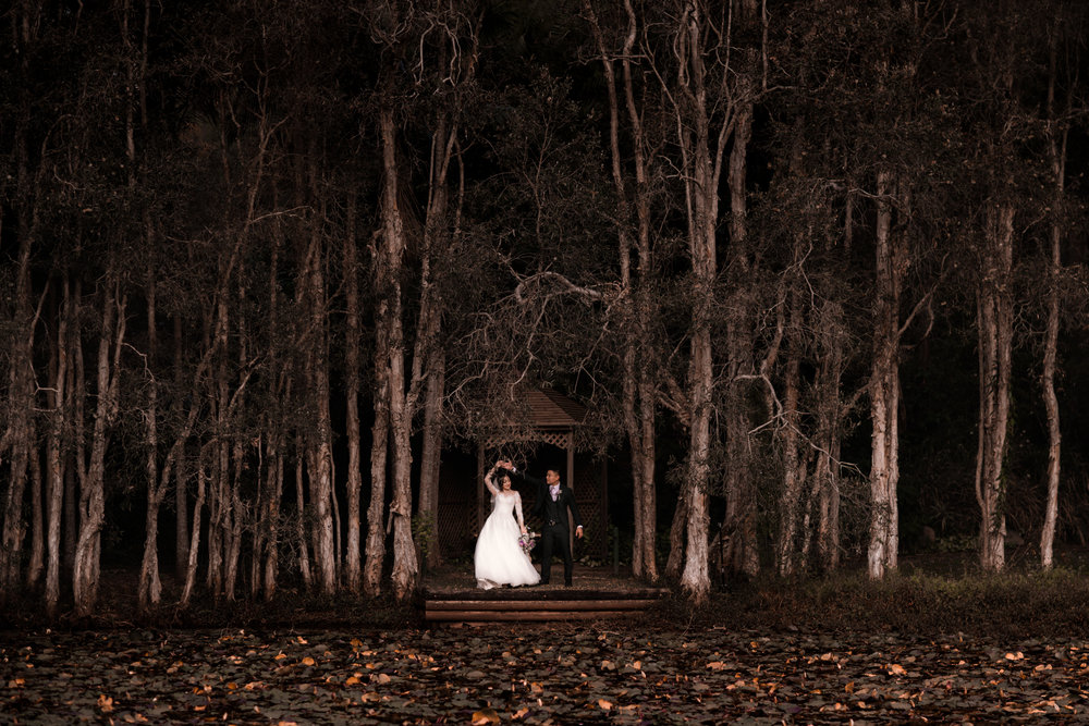 LOVELENSCAPES PHOTOGRAPHY • M + D • COOLIBAH DOWNS • TAMBORINE WEDDING • 393.jpg