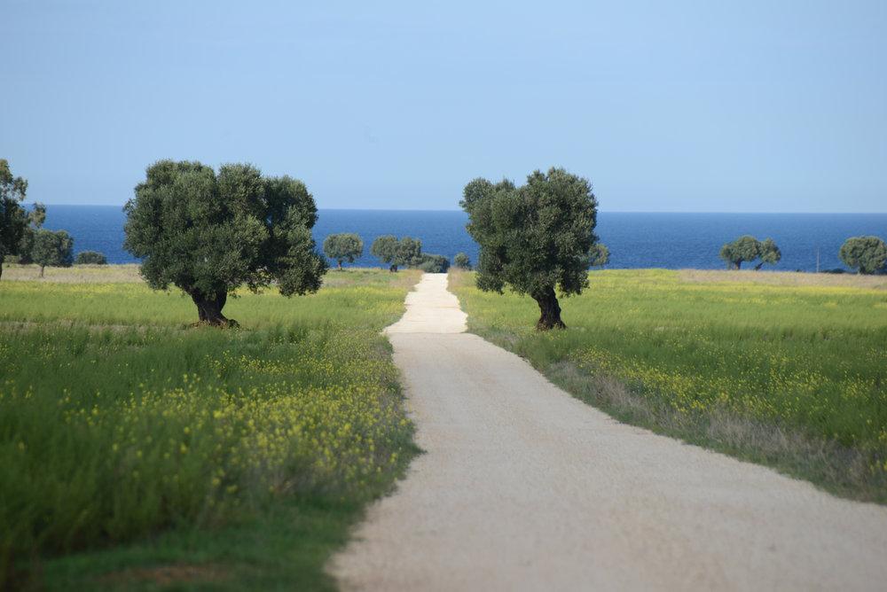 Nastia_Vesna_Workshop_Puglia15.jpg