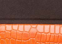 Crocodile Orange lined dark brown.jpg