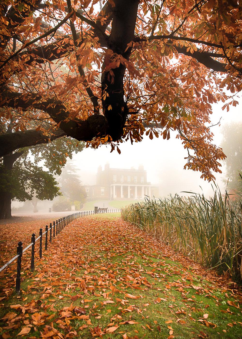 autumnstokeyp5x7-1.jpg