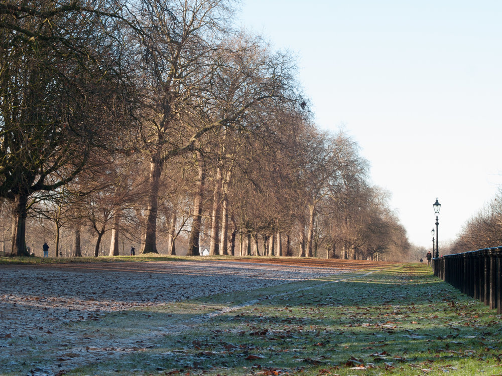 Hyde Park on a frosty morning!