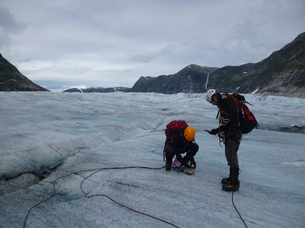 Collect data in the field - just like a researcher.