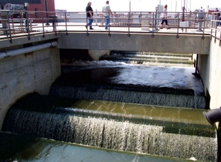 Wastewater flow at Deer Island Treatment Plant, Boston, MA