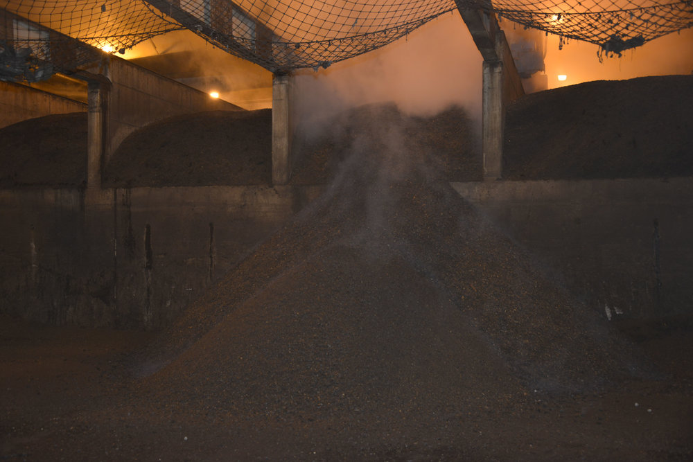 Steaming piles of fresh compost at the end of the enclosed, high-tech biosolids compost facility in Auburn.