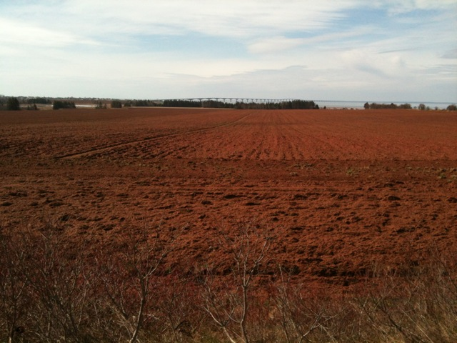 The Charlottetown soils of Prince Edward Island are derived from iron-rich bedrock and soil particles. This soil is the official  Provincial Soil of PEI .