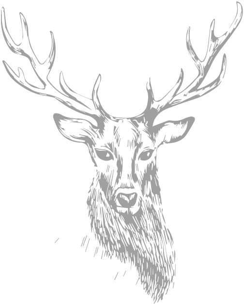 stag (1).png