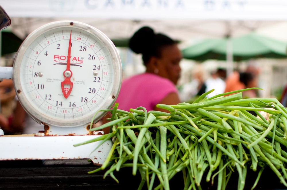 Camana Bay Farmers Market | Photo Credit: Find. Eat. Drink.