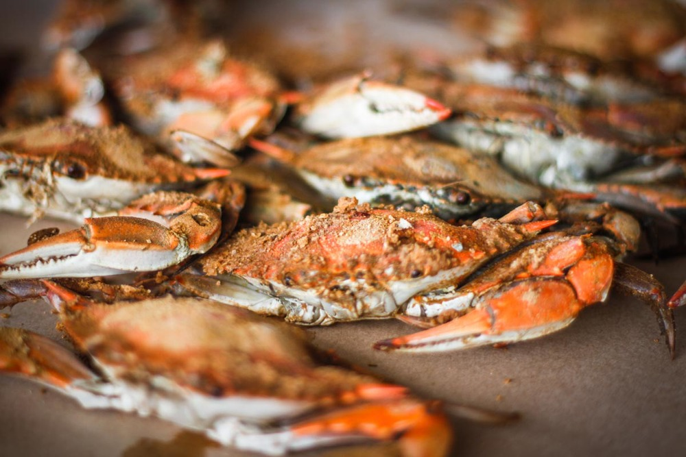 Maryland Crabs | Photo Credit: Pulaw [flickr]