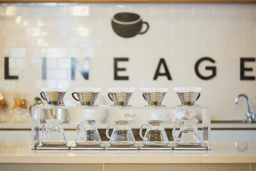 Photograph courtesy of Lineage Coffee