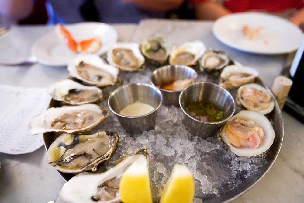 Oysters at Neptune Oyster | Photo Credit: Fred Immel for Find. Eat. Drink.