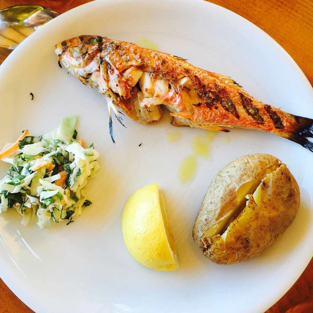 Local barbounia simply grilled at Fokos | Photo Credit: Kylie Monagan of Amali