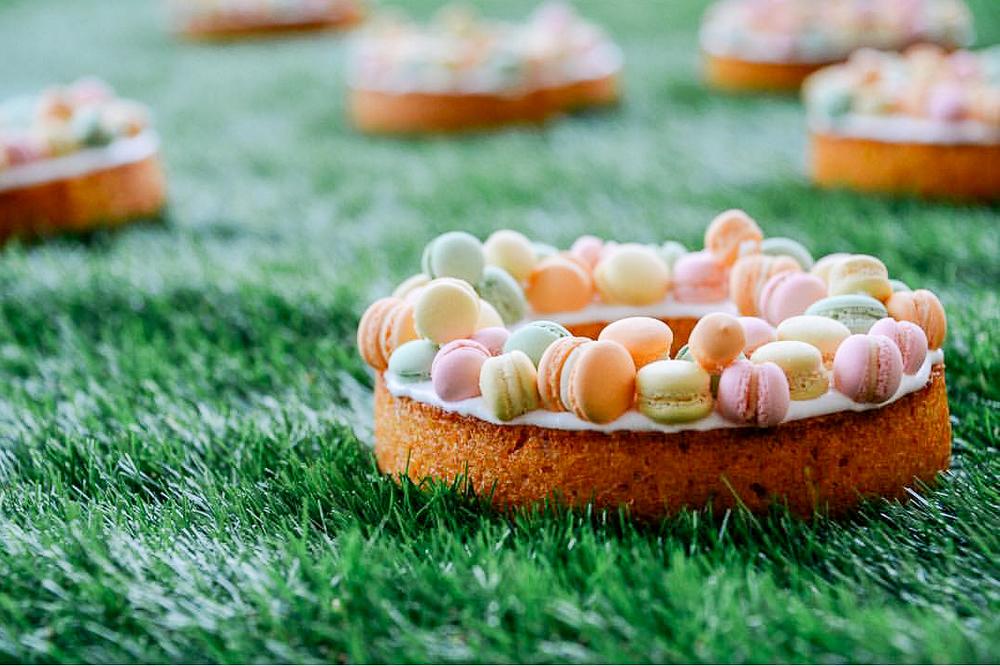 Macaron Cake | Craftsman and Wolves