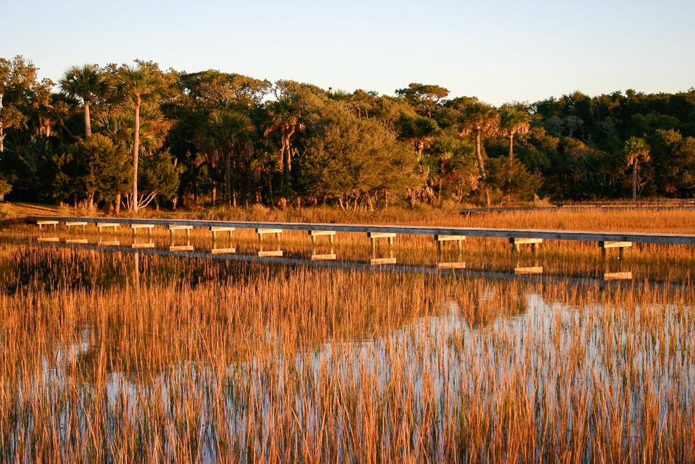 Edisto Island | Photo Credit: Marilyn C. Cole [Flickr]