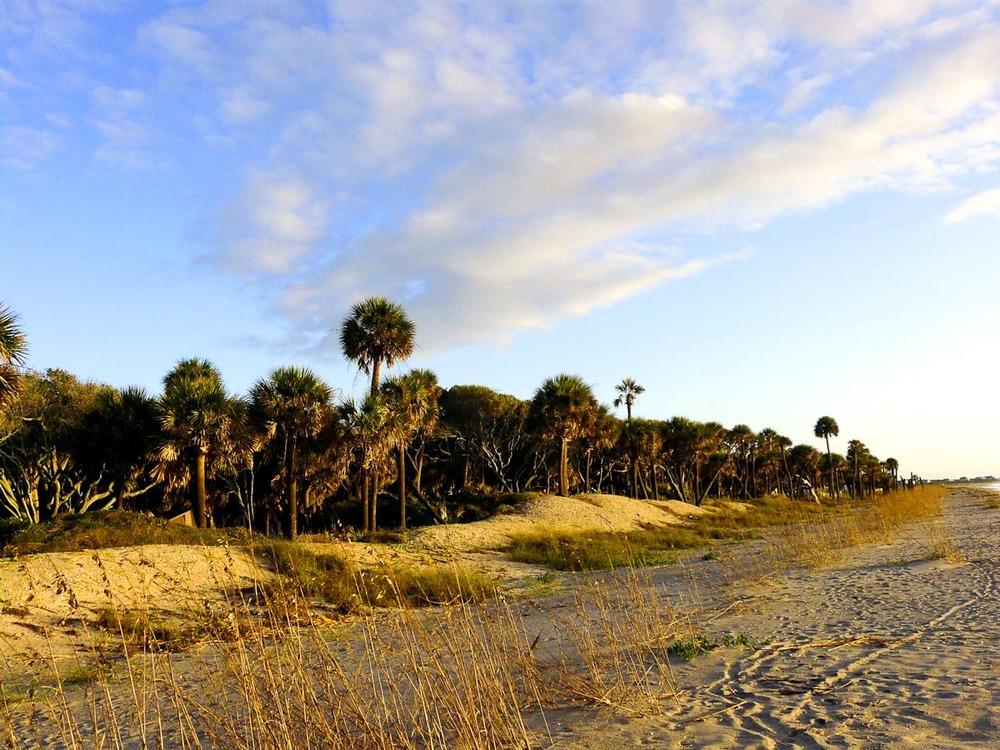 Edisto Island | Photo Credit:Ken Ratcliff [flickr]