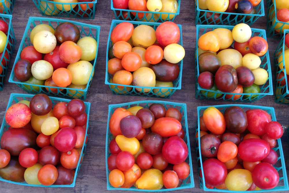 Union Square Greenmarket | Photo Credit: ©Find. Eat. Drink.