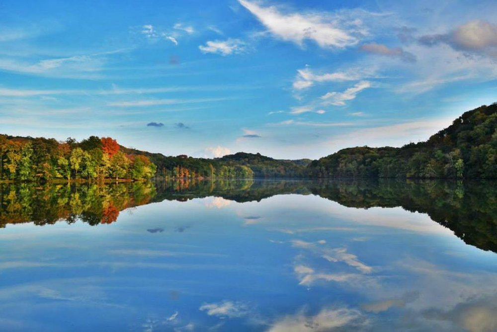 Photograph courtesy of Friends of Radnor Lake
