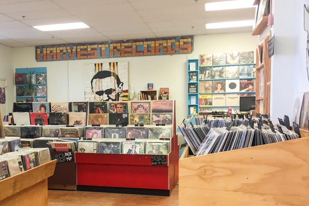Vinyl bins at Harvest Records |Photo Credit: ©Find. Eat. Drink.