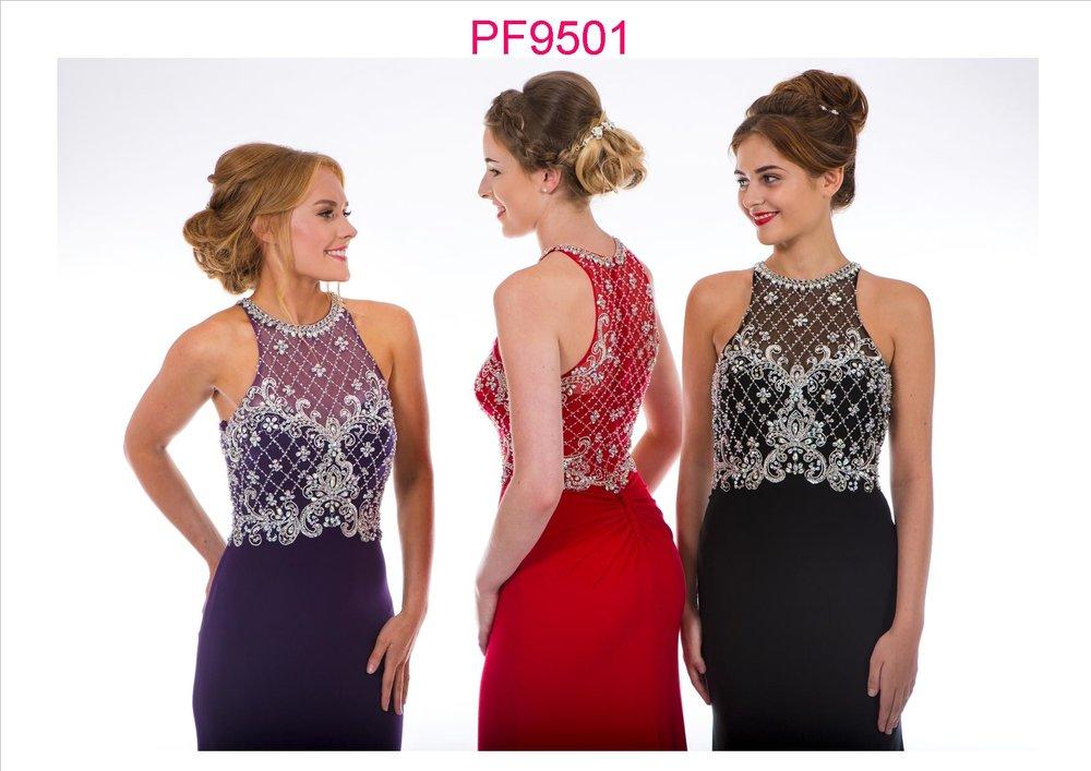 PF9501 Group b.jpg