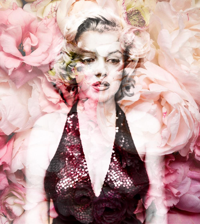 JAF09_2014_Marilyn2.jpg