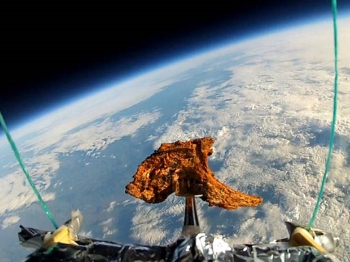 Yes that is a lamb chop in space.