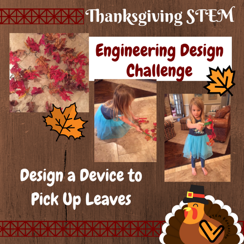 Be an engineer and design a device to pick up leaves! Fun for all ages!