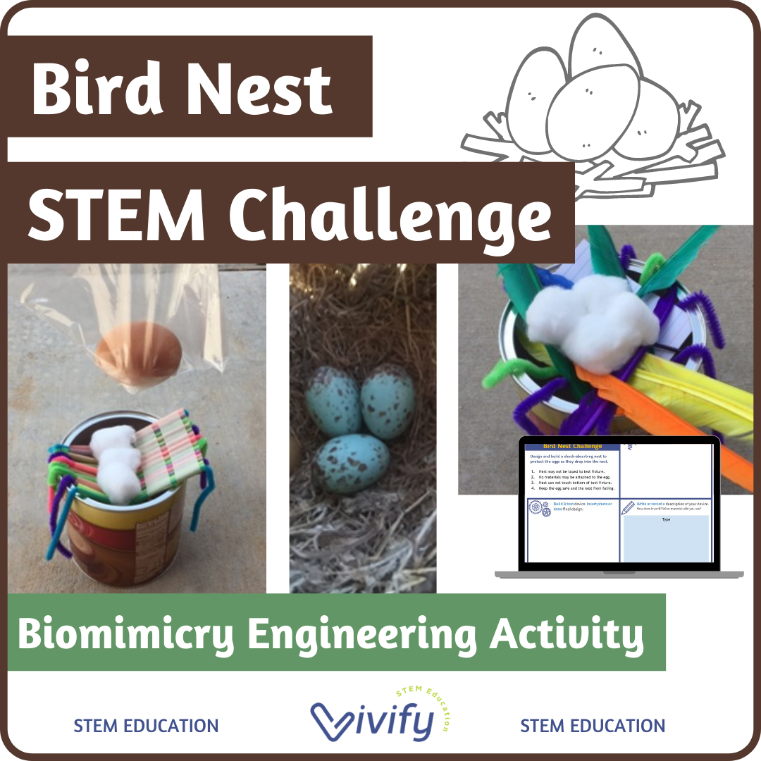 Bird Nest Stem Challenge Biomimicry Engineering Activity Vivify Stem