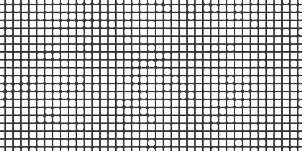 RN-pidgin-4 - small alt.jpg