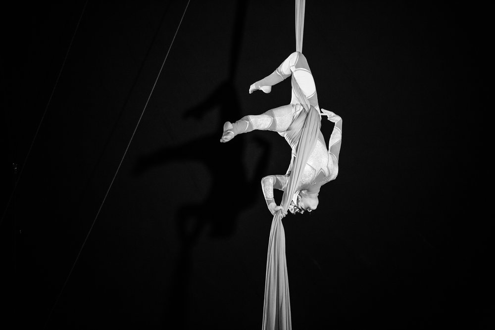 Lisandra Austin on silks by Gem Hall