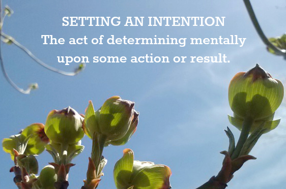 Hypnotherapy in Ridgefield, Mt. Kisco & Westport from Tesa Baum can help you set your intentions!