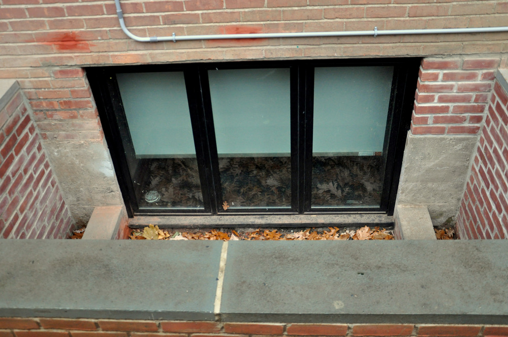 Enlarged Window and window well with planters