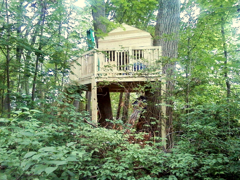 Back Treehouse .JPG