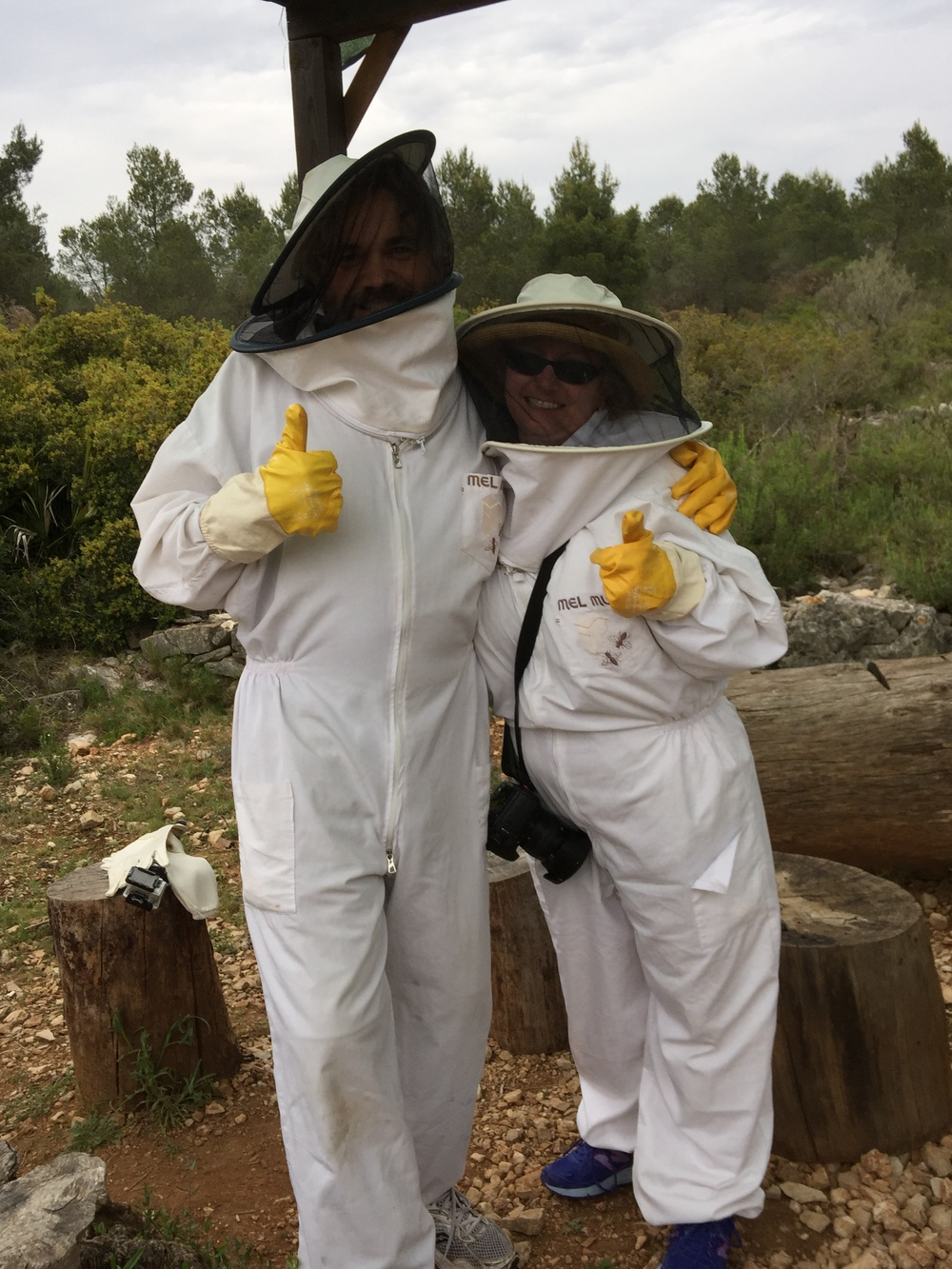 What's worse than being surrounded by angry bees? First finding out you probably don't have a hotel room in Barcelona, and then hanging out with angry bees. True story.