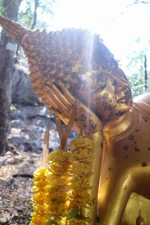 Sunshine & Buddha