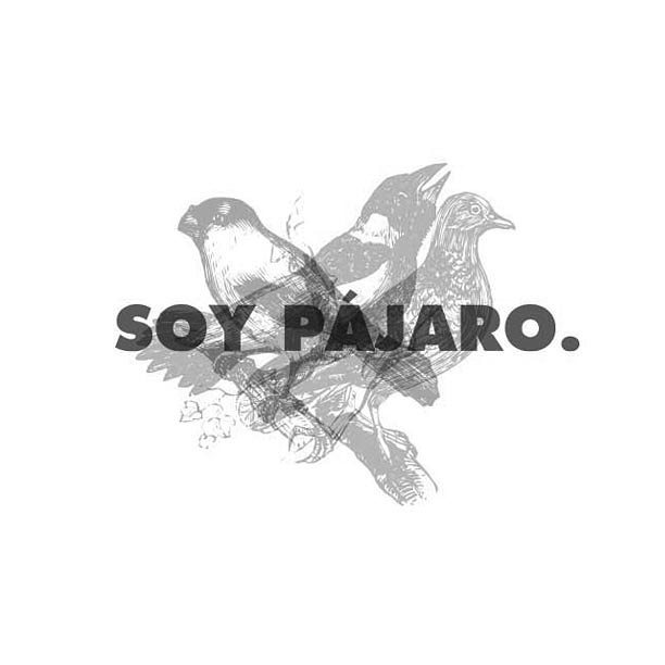 Soy Pájaro.  #branding #design #logo #id #graphicdesign #naming #brandidentity