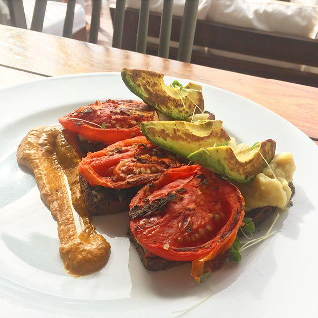 Delicious breakfast @therealcoconut  #vegantulum #vegantravel #veganmexican #veganfoodshare #vegabonding