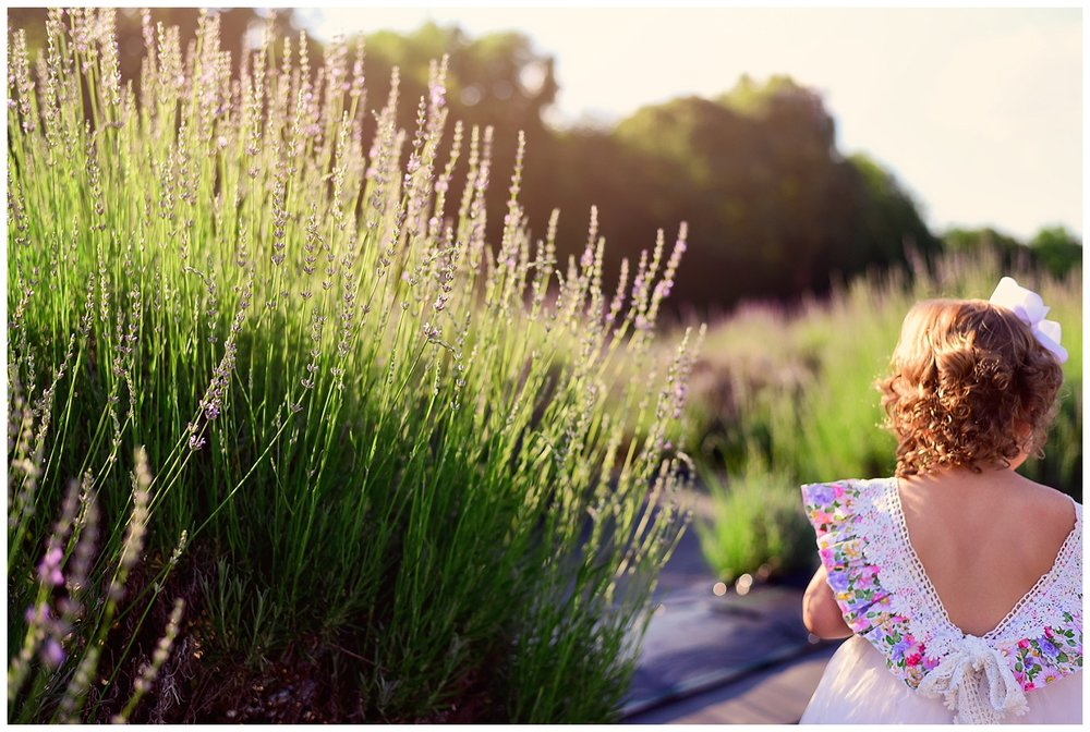 Lavender Garden Photo Shoot