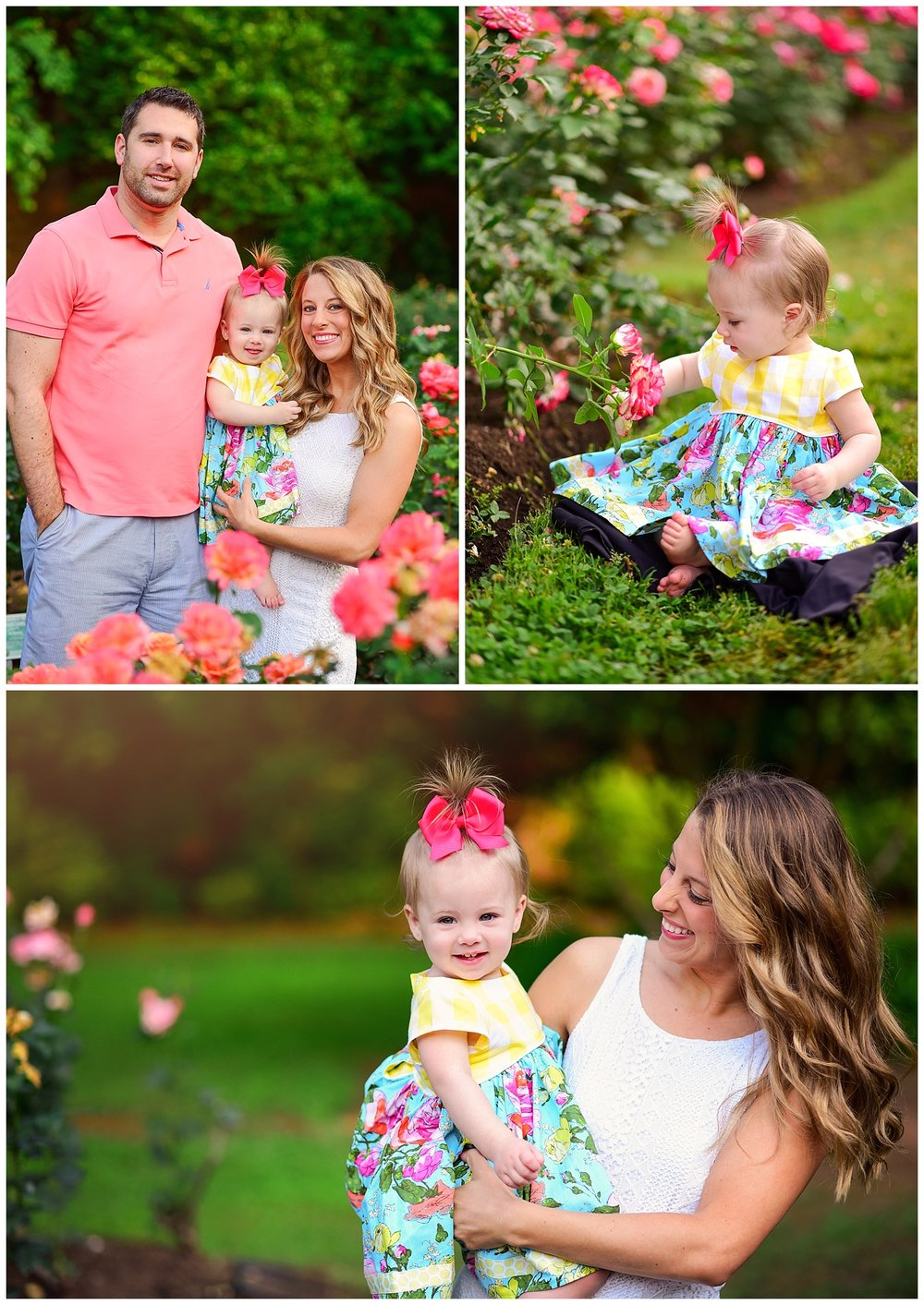 One year old photos in rose garden