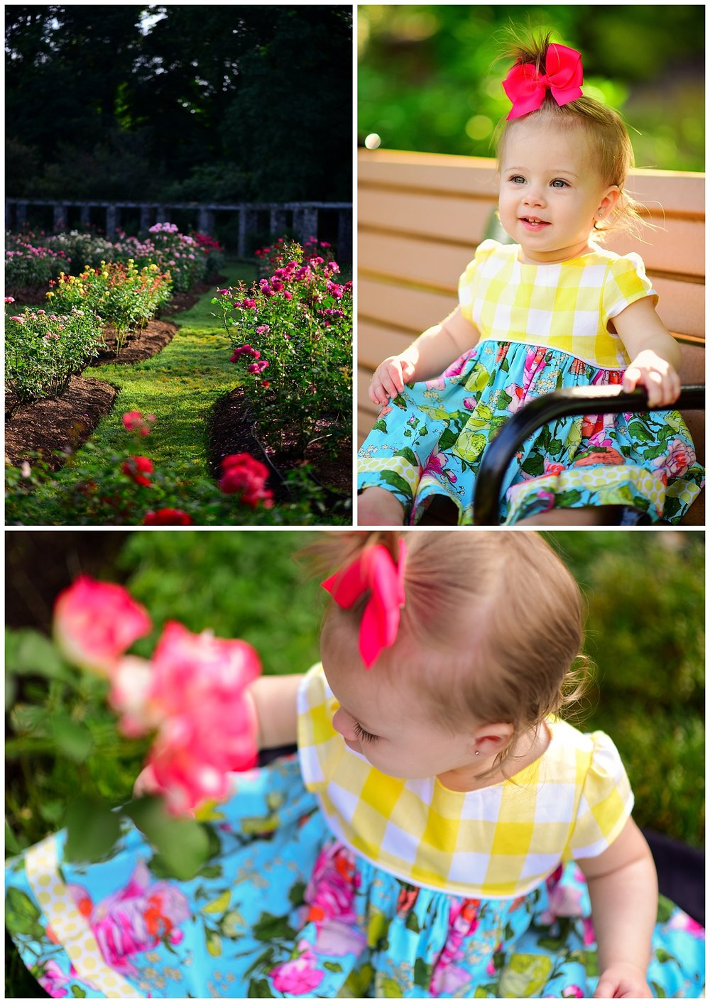 One year old in rose garden