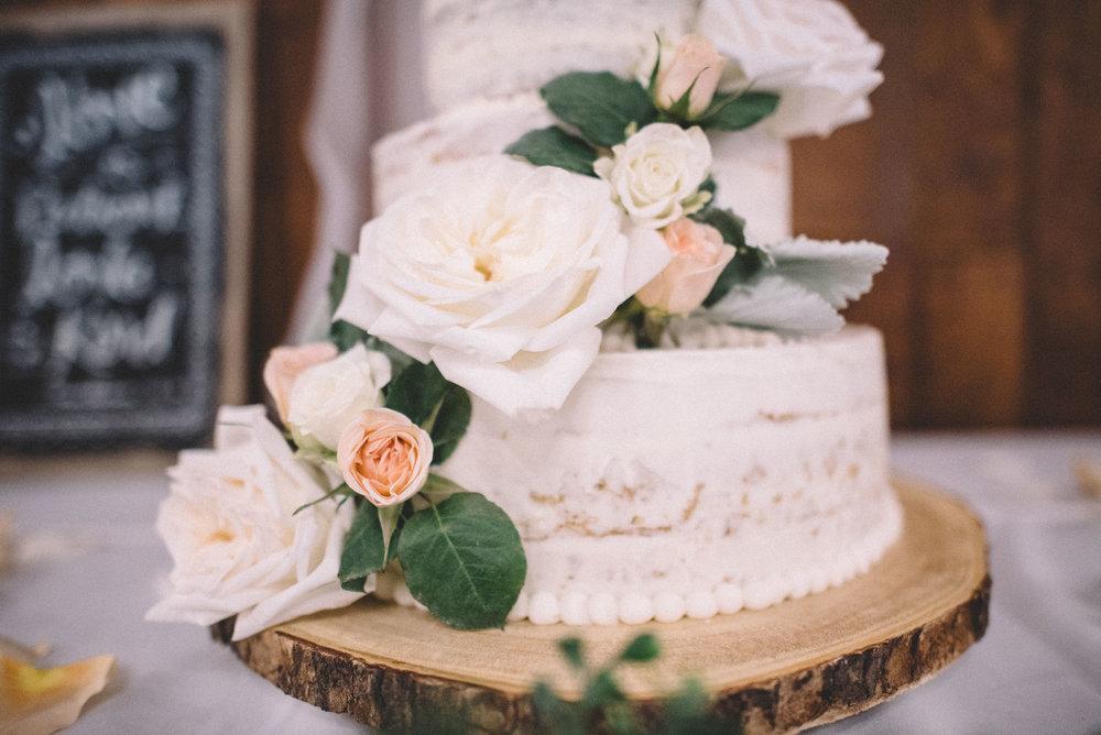 Shenandoah-virginia-wedding-photographer-28.jpg