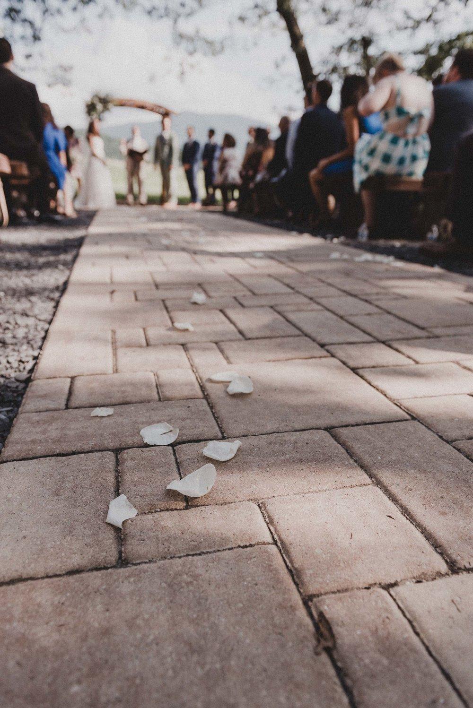 Shenandoah Woods Wedding-70.jpg