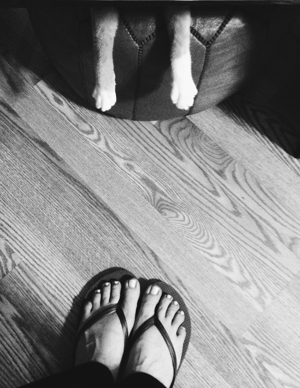 Day 53: One foot, two feet. Fuzzy fur feet. - Dr. Seuss