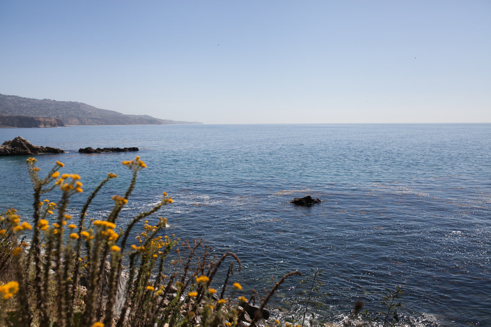 A seaside walk in the  Terranea Resort  grounds
